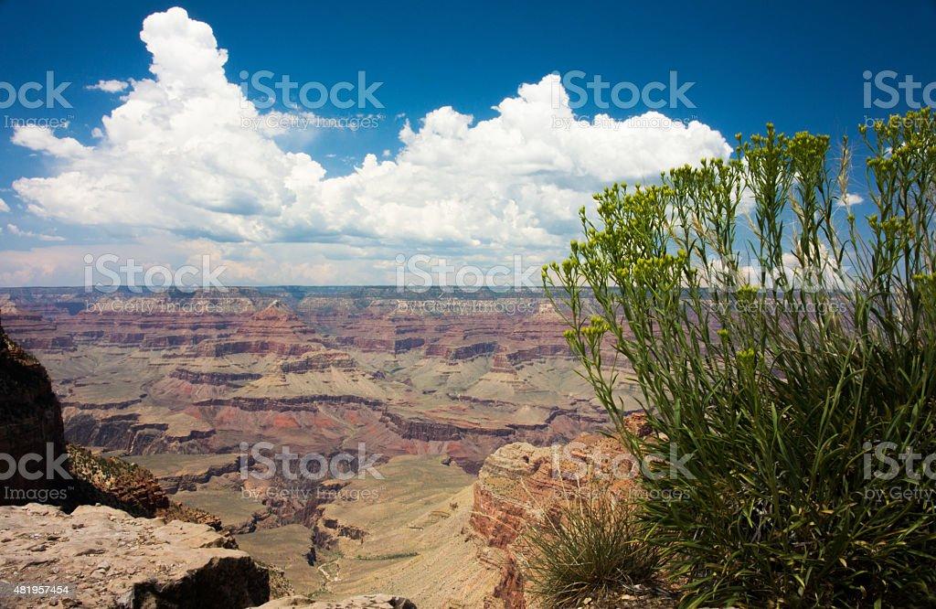 Bellissima vista canyon in arizona foto stock royalty-free