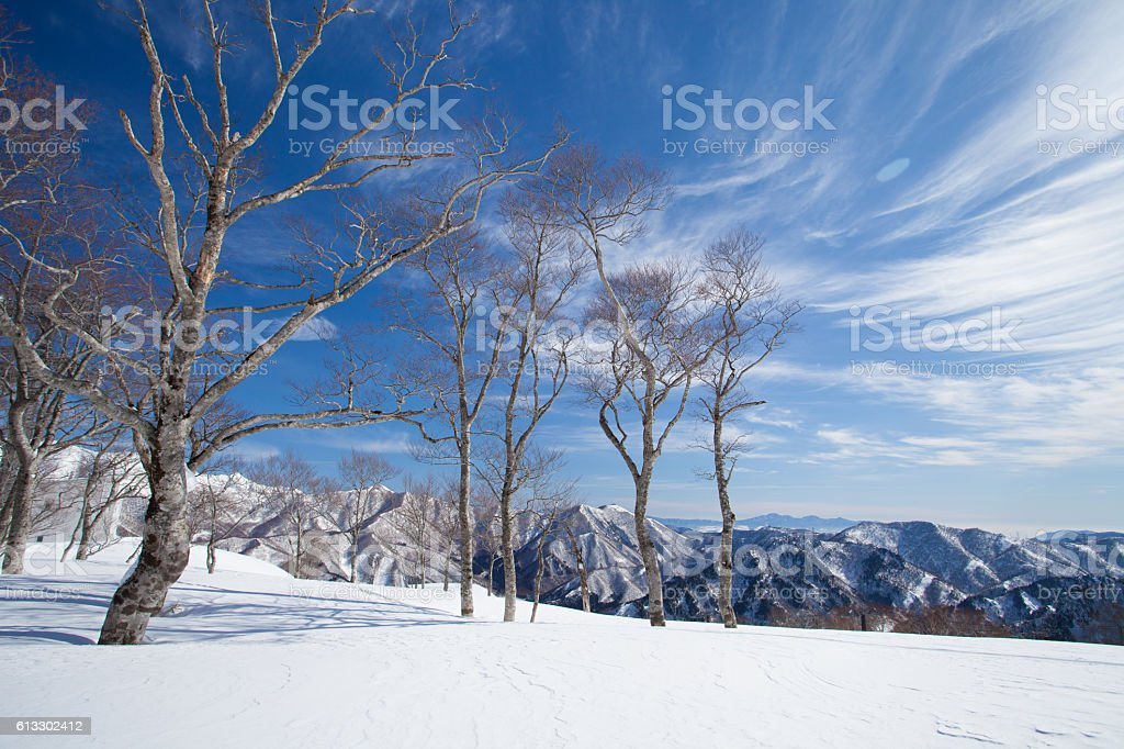 Beauitufl Japan Alps covered with snow stock photo