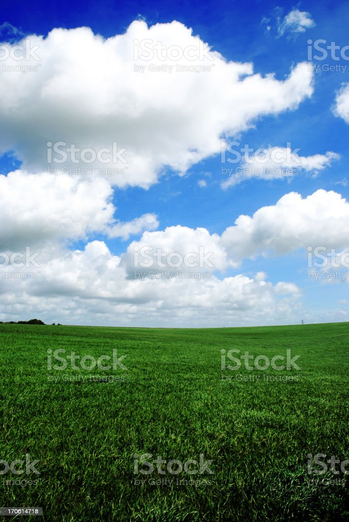 Beautifil Green ffields With Fluffy Clouds On Bright Day royalty-free stock photo