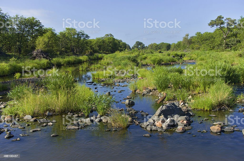 Beautiful african river landscape stock photo