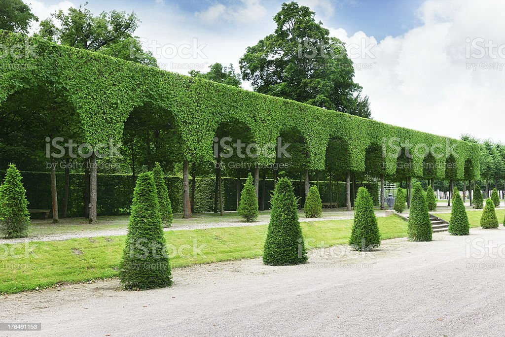 Beautiful alley royalty-free stock photo