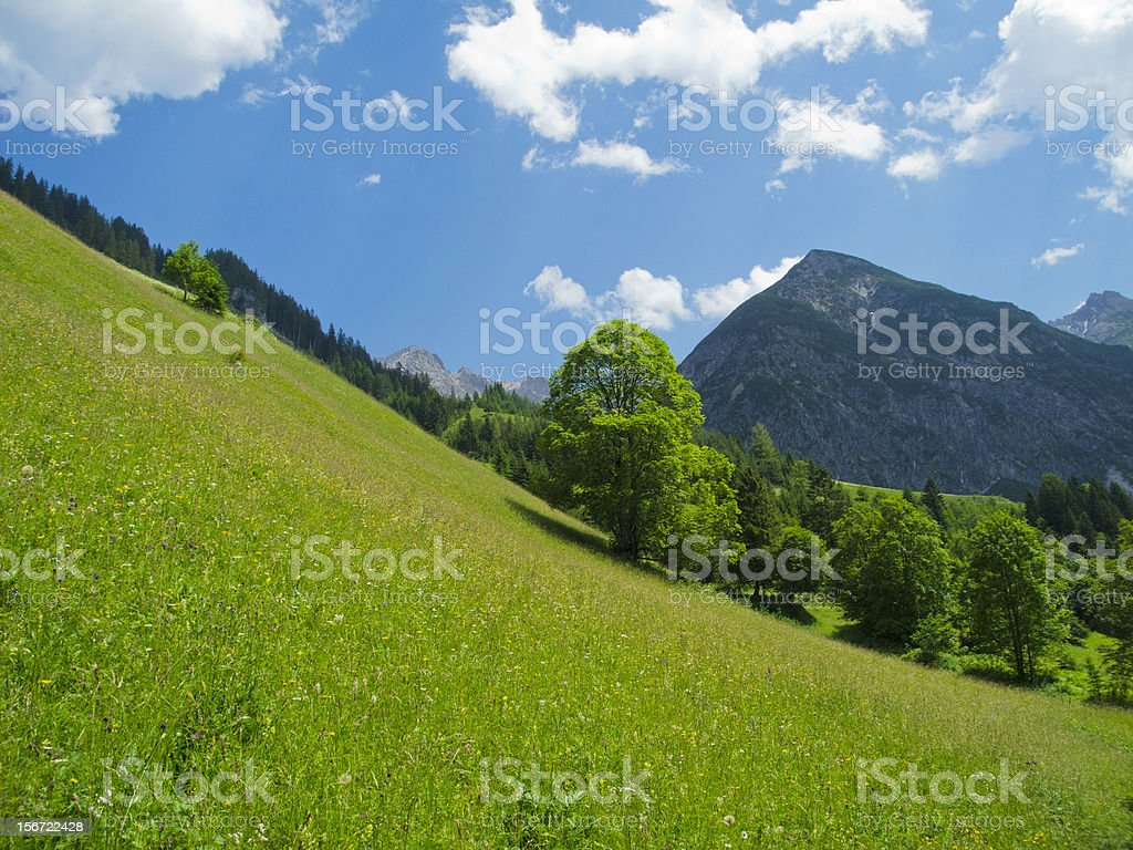 beautiful alpine scenery stock photo