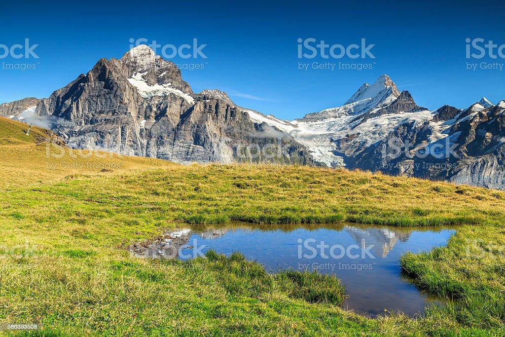 Beautiful alpine tarn,Grindelwald,Switzerland,Europe stock photo