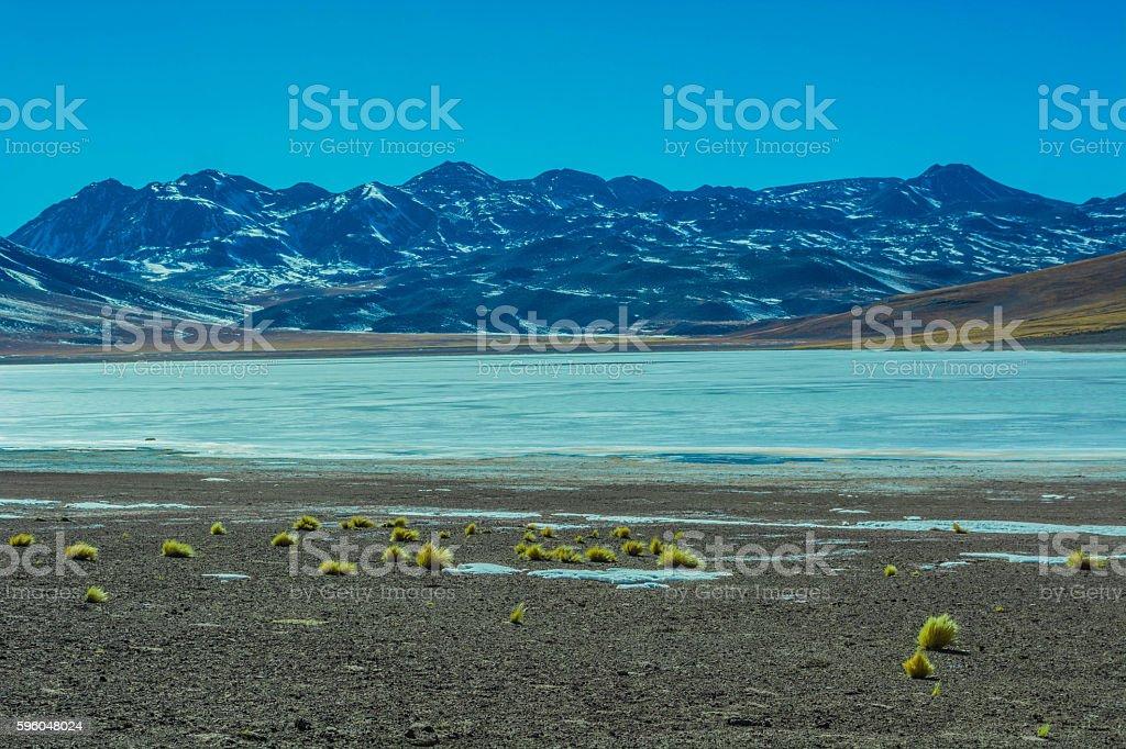 Beautiful altiplanic lagoon in Chile stock photo