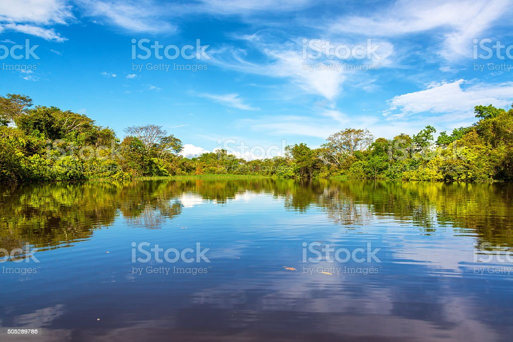 Beautiful Amazon Reflection stock photo