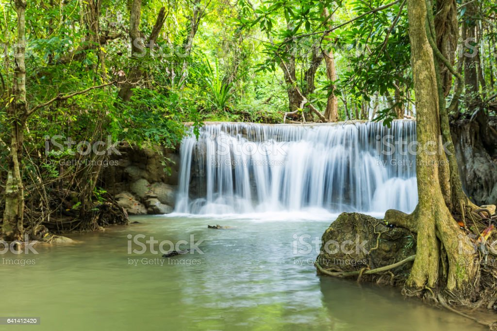 Beautiful and Breathtaking green waterfall in the evergreen forest stock photo
