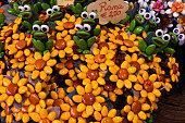 beautiful and colorful confetti facts sulmona