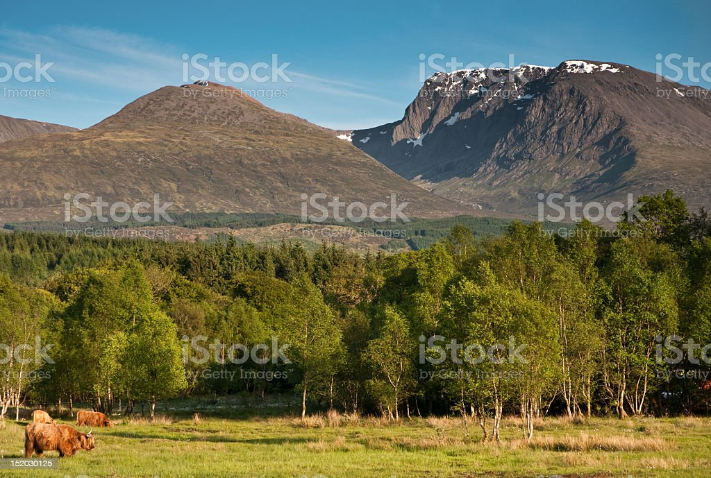 Beautiful and relaxing scene of Ben Nevis stock photo