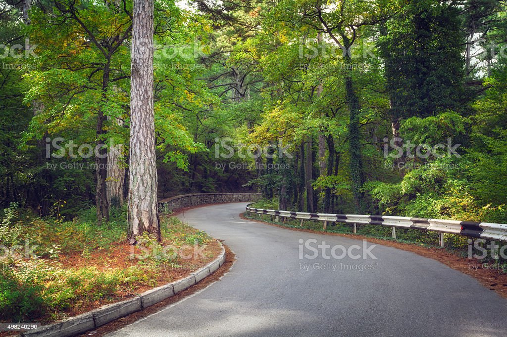 Beautiful asphalt road in autumn forest at sunrise stock photo