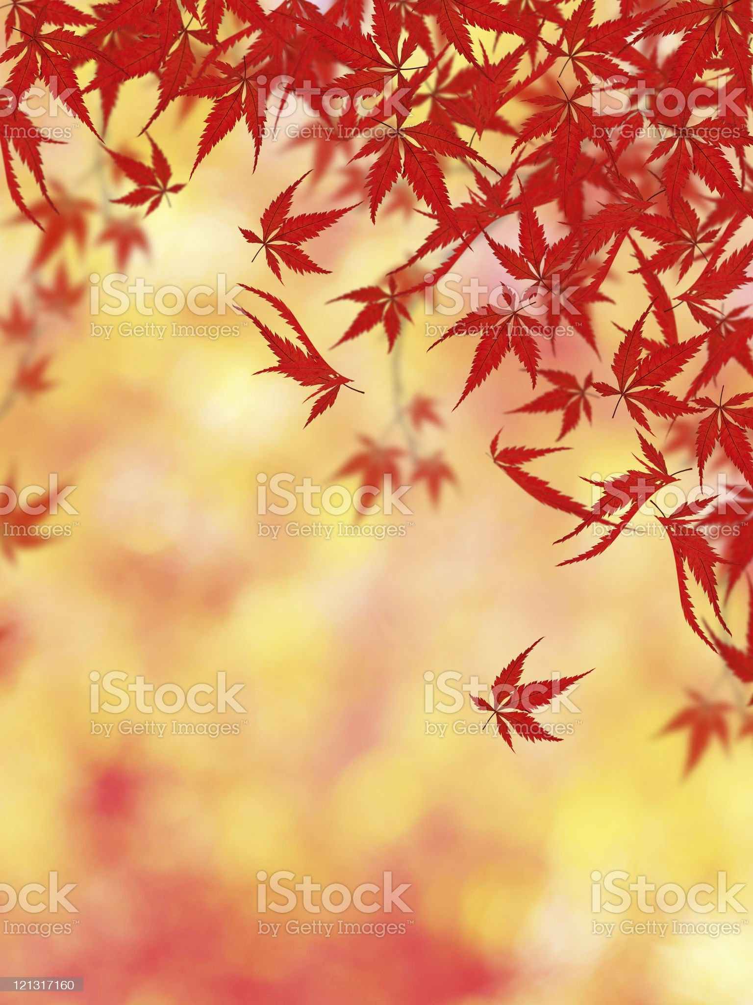 Beautiful Autumn Background royalty-free stock photo
