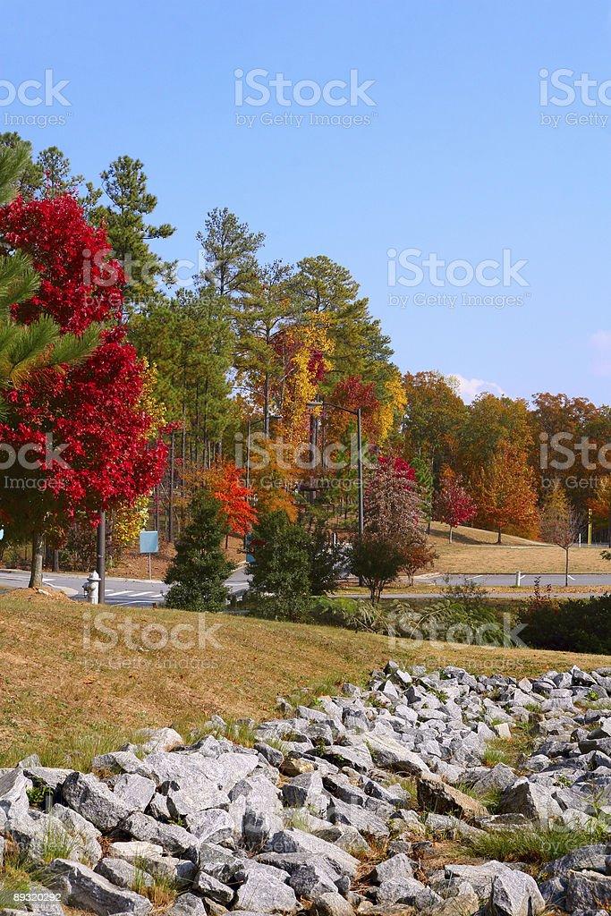 Belle automne Couleur photo libre de droits