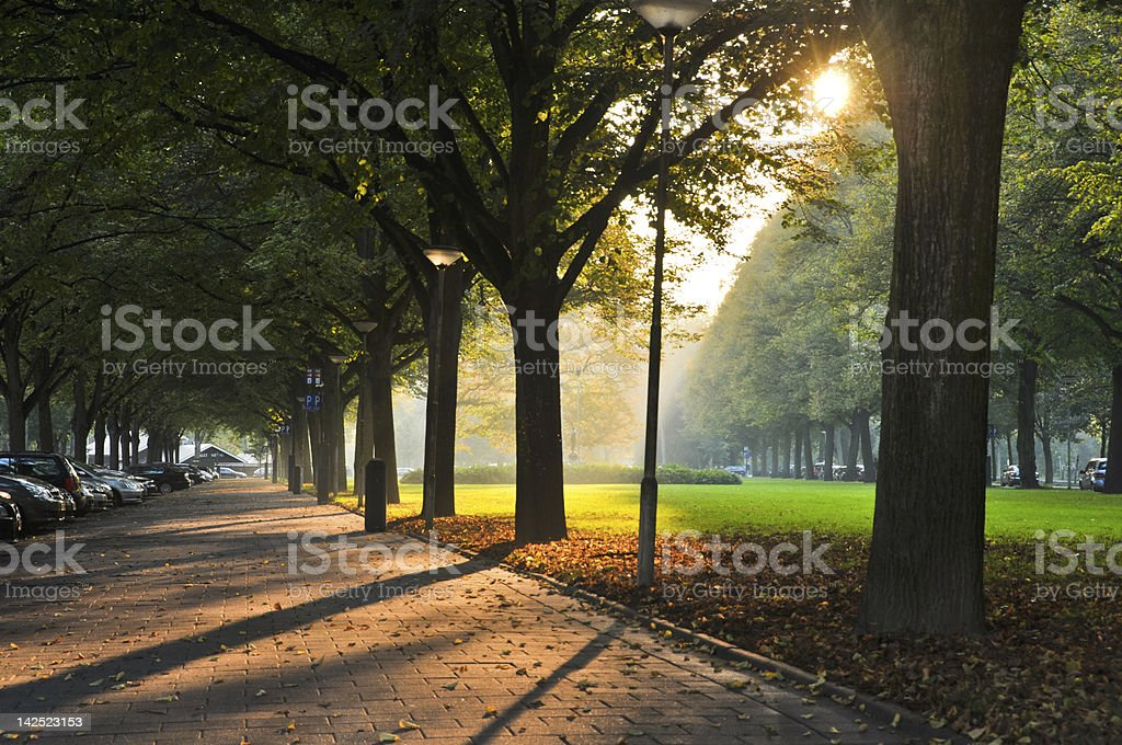 beautiful autumn day royalty-free stock photo