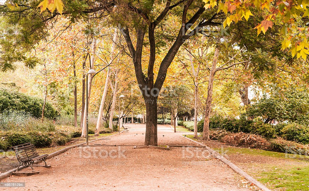 Beautiful autumn in Madrid. stock photo