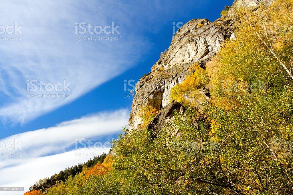 Beautiful autumn landscape in the peak of the season stock photo