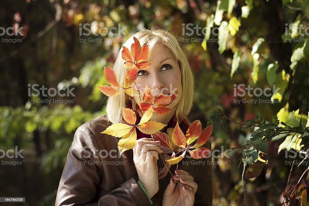 Beautiful autumn portrait of the girl royalty-free stock photo