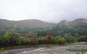 Beautiful autumn trees along the river of Shirakawa village
