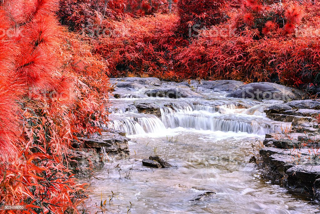 Beautiful autumn waterfall in deep forest. stock photo