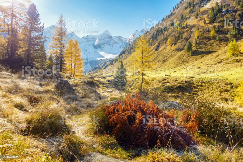 Beautiful autumnal landscape in the Austrian Alps stock photo
