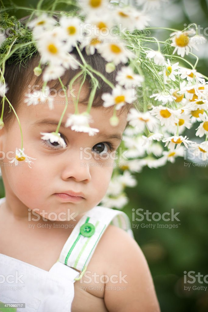 beautiful baby royalty-free stock photo