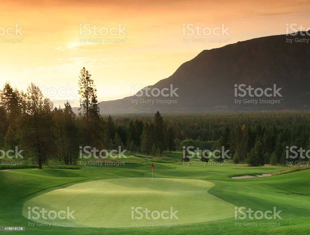 Beautiful Backlit Golf Green stock photo