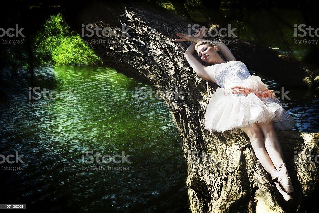 Beautiful ballerina near by lake stock photo
