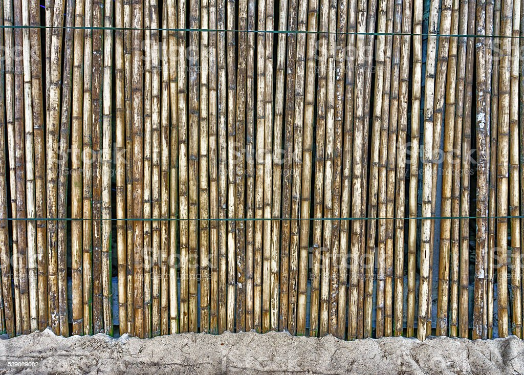 beautiful Bamboo fence on the sand stock photo