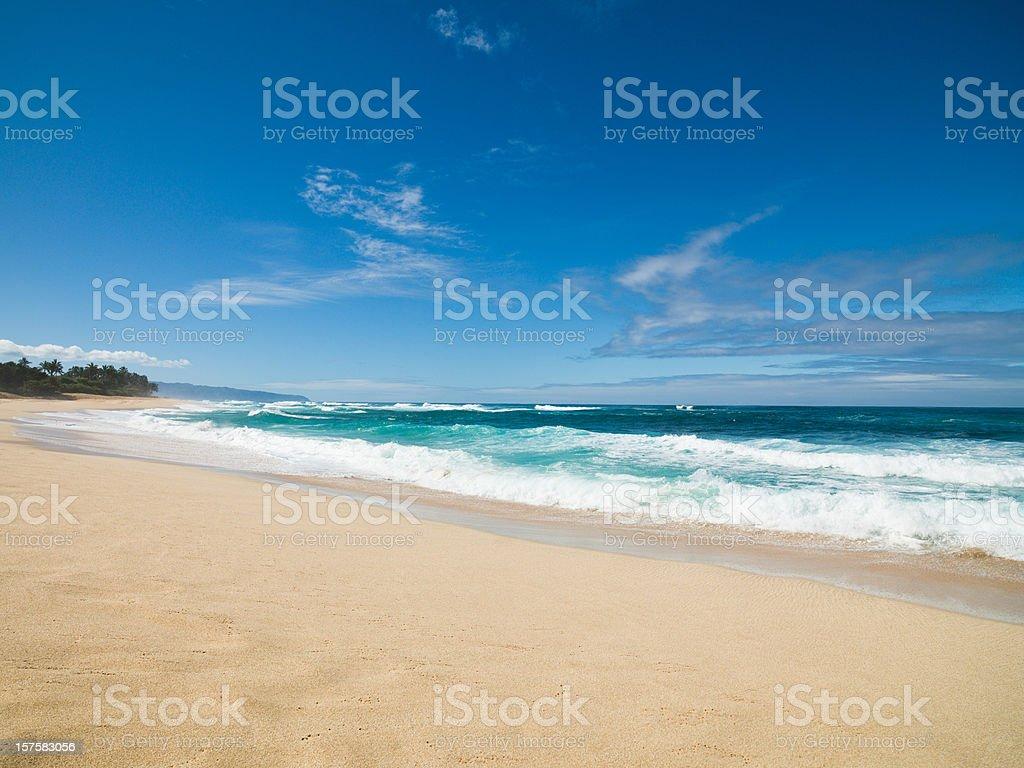 Beautiful Beach Hawaii royalty-free stock photo