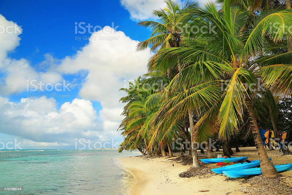 Beautiful beach in Guadeloupe, Caribbean Islands stock photo