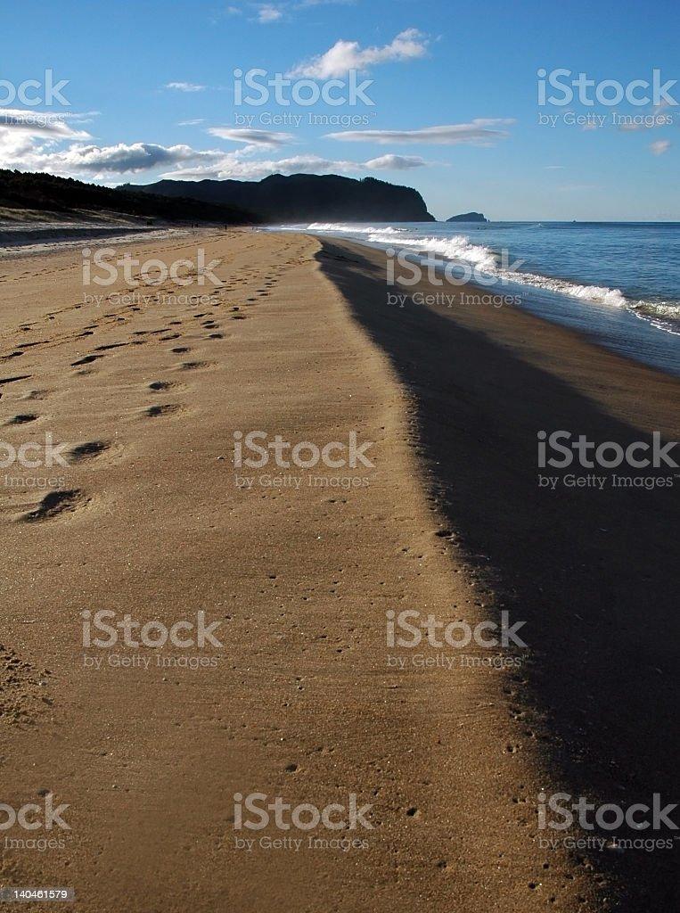 Beautiful beach in New Zealand royalty-free stock photo