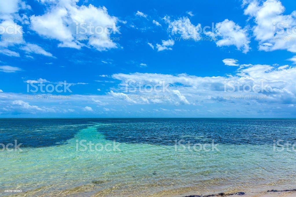 beautiful  beach in the Keys stock photo