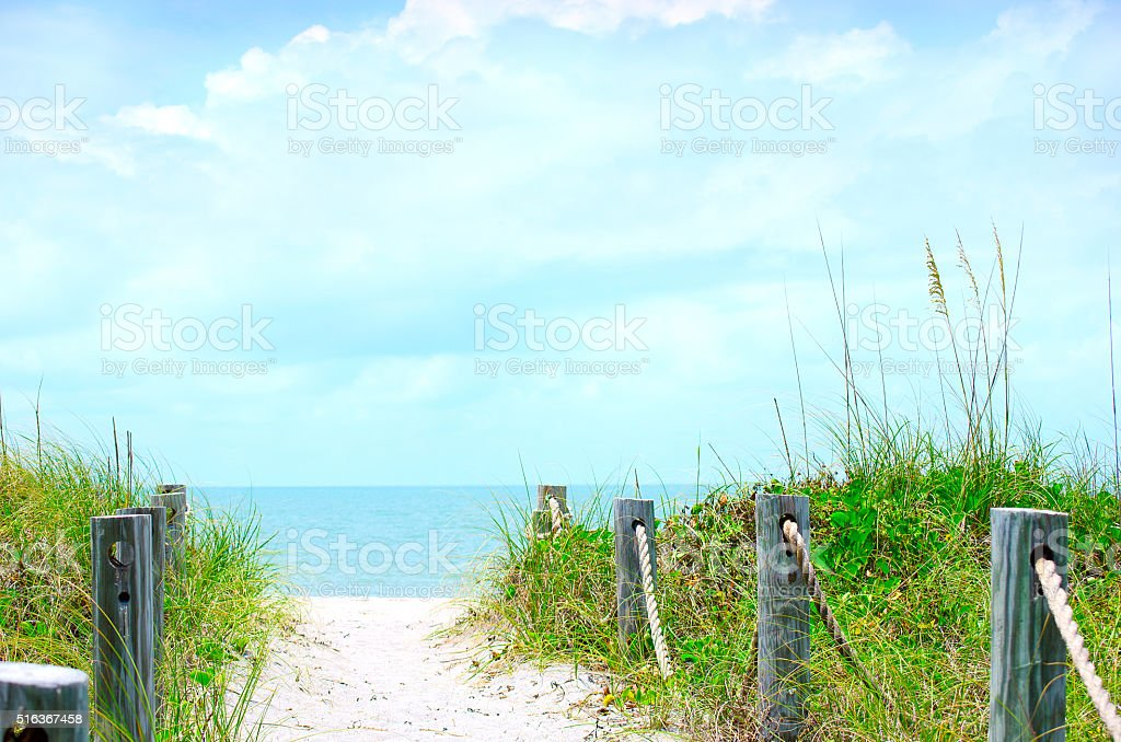 Beautiful beach path scene with sea oats stock photo