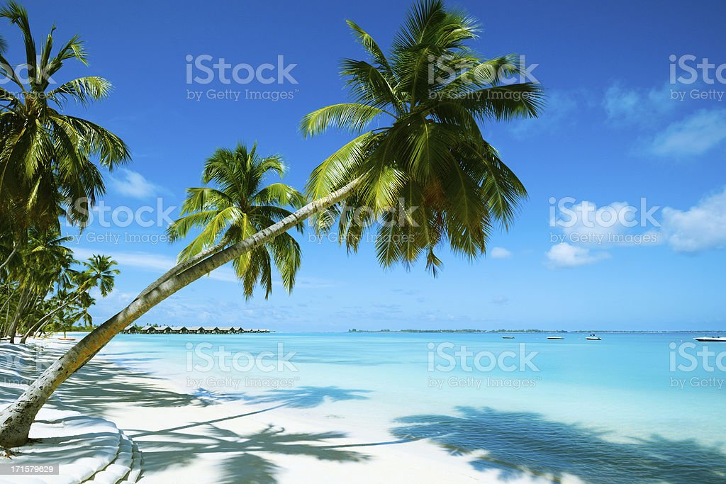 Beautiful Beach Resort stock photo