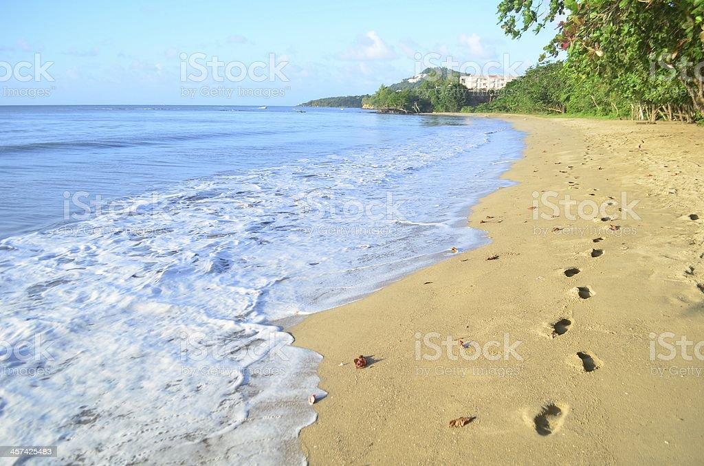 beautiful beach shore and footprints scenic stock photo