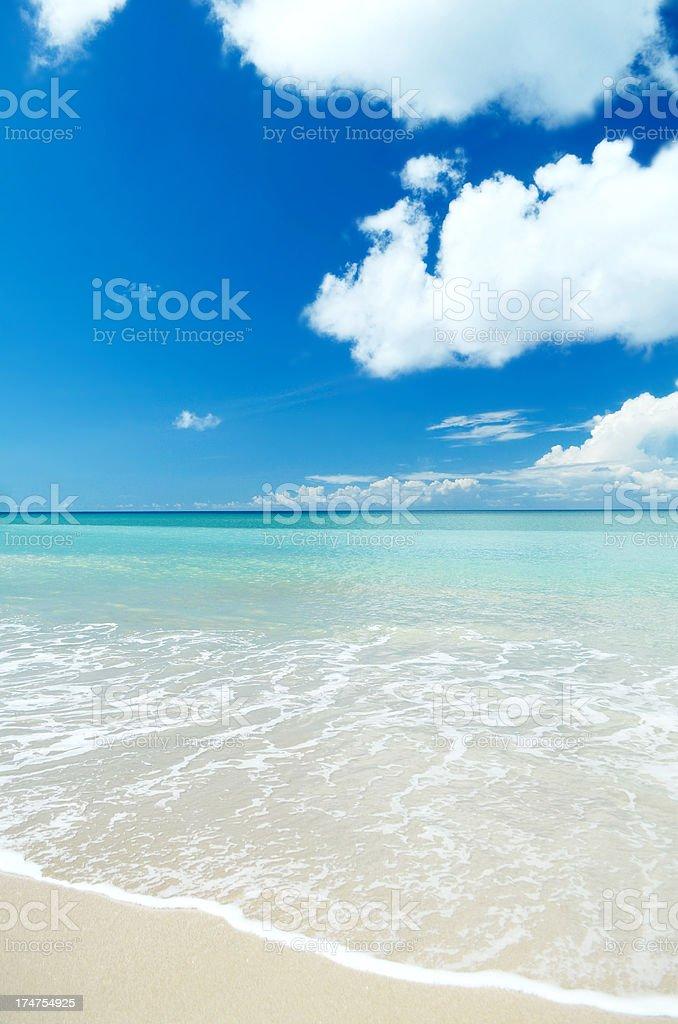 beautiful beach white sand and blue sky stock photo