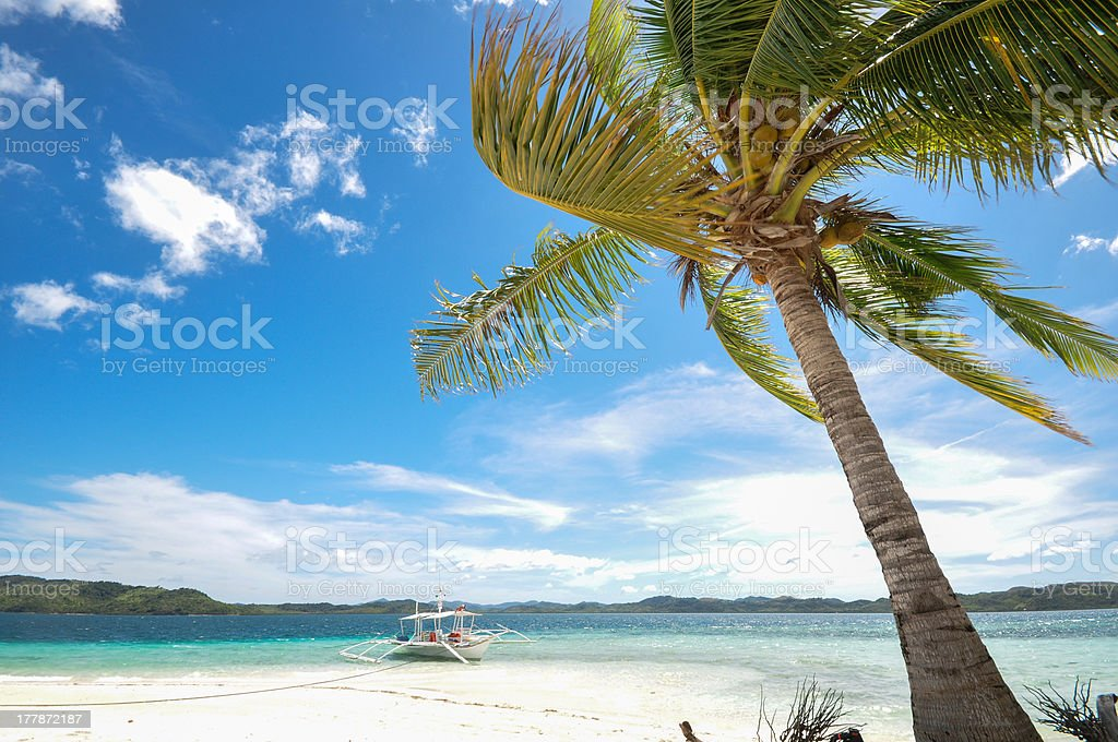 beautiful beach with background of boat and coconut tree royalty-free stock photo