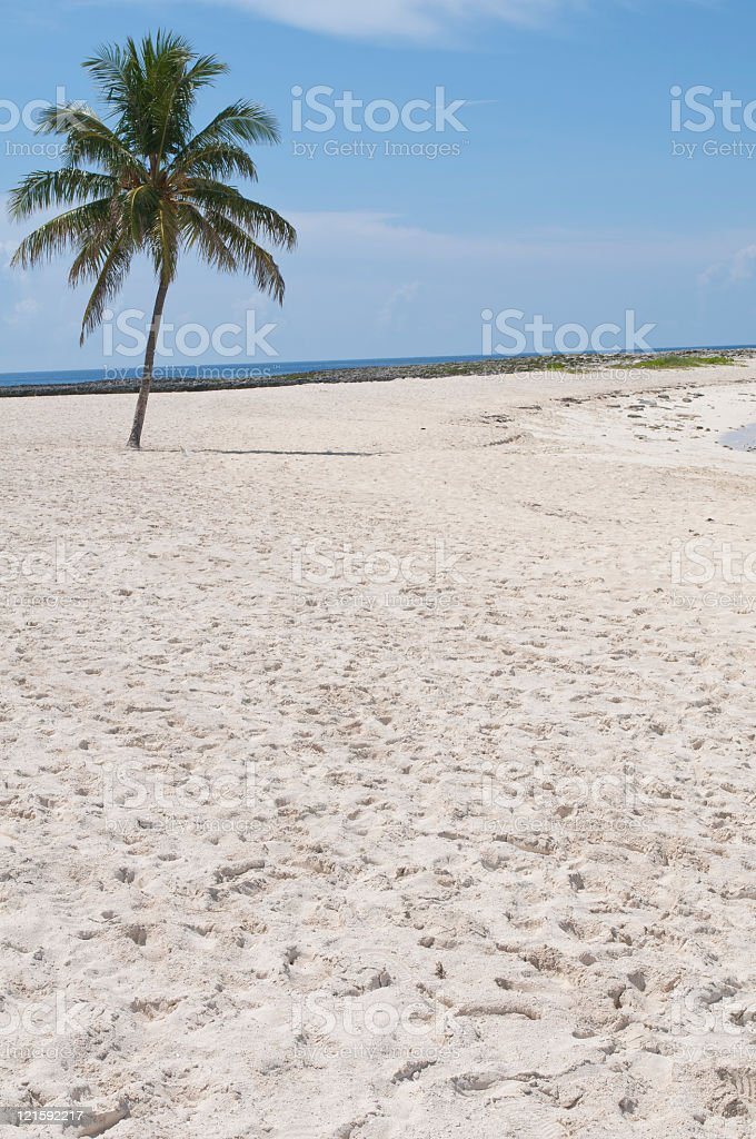 Beautiful Beach with ocean in background stock photo