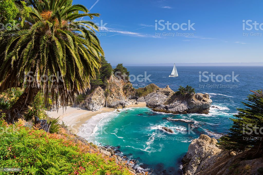 Beautiful beach with palm trees and yacht on the horizon stock photo