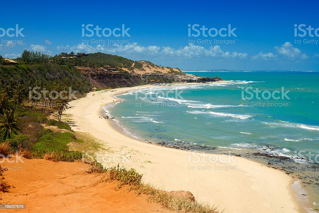 Beautiful beach with palm trees at Praia do Amor Brazil stock photo