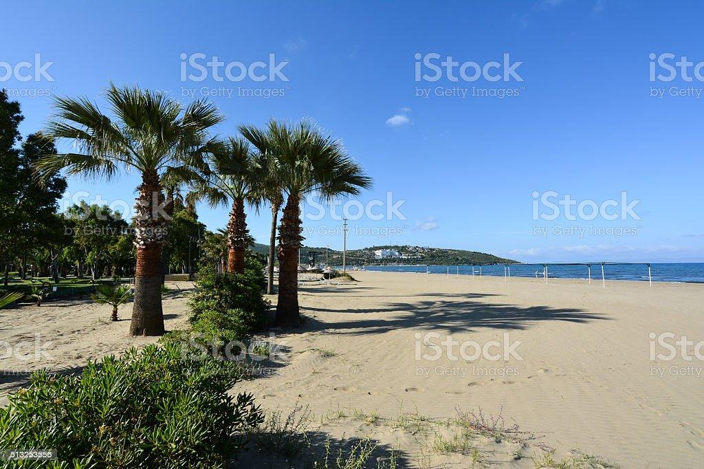 Beautiful beach with palm trees, Kusadasi, Turkey stock photo