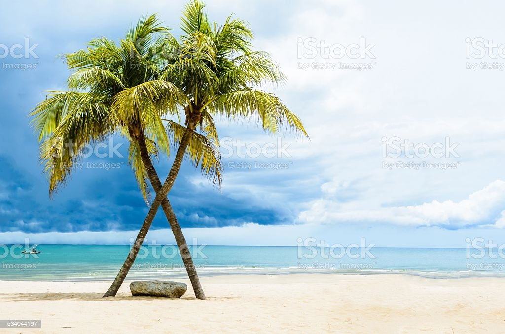 Beautiful beach with palms, Thailand stock photo