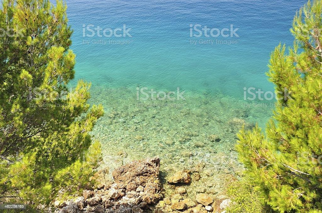 Piękna plaża z kamieni w otoczeniu drzew zbiór zdjęć royalty-free