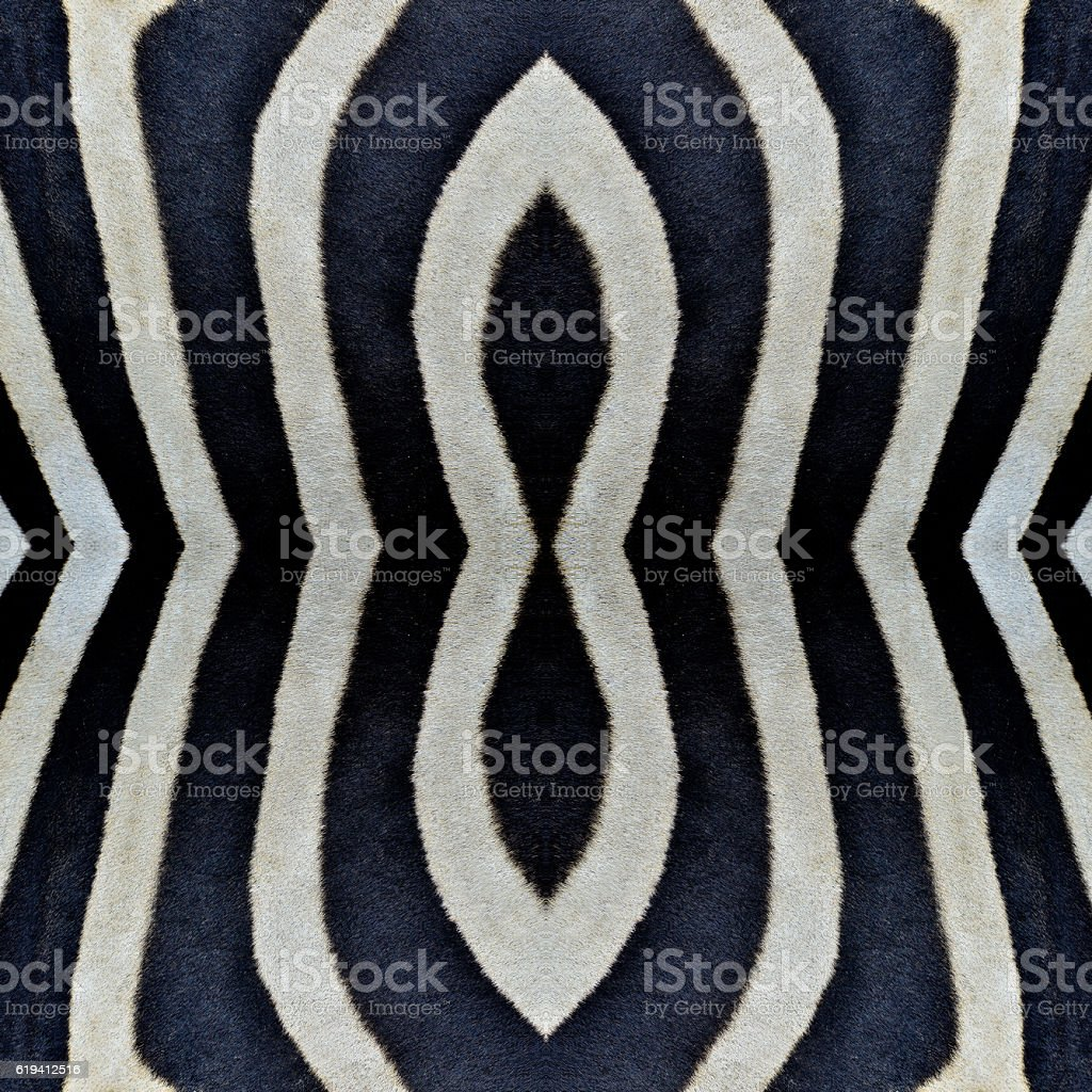 Beautiful Black and white camouflage patterns made from zebra sk stock photo