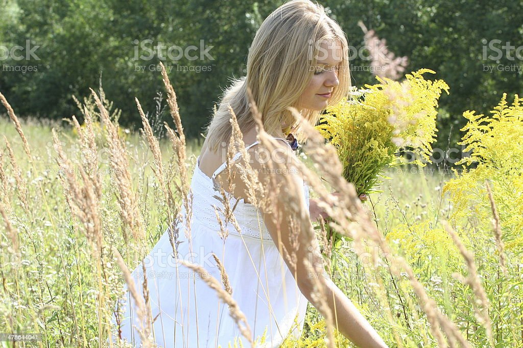 Beautiful blond pregnant woman in white dress picking flowers royalty-free stock photo