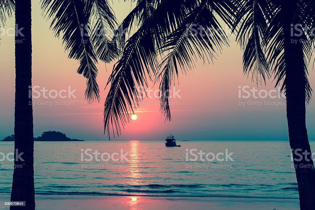 Beautiful bloody sunset on a tropical beach, palm trees silhouettes. stock photo