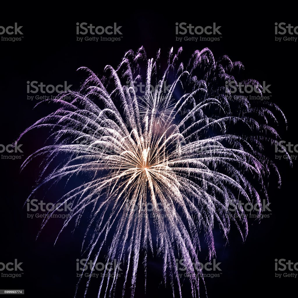 Beautiful blue and gold fireworks pyrotechnic effect exploding on black stock photo