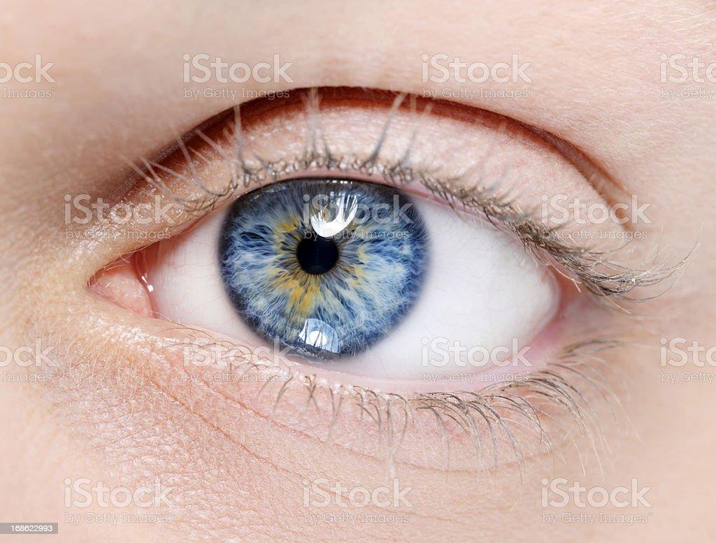beautiful blue eye royalty-free stock photo