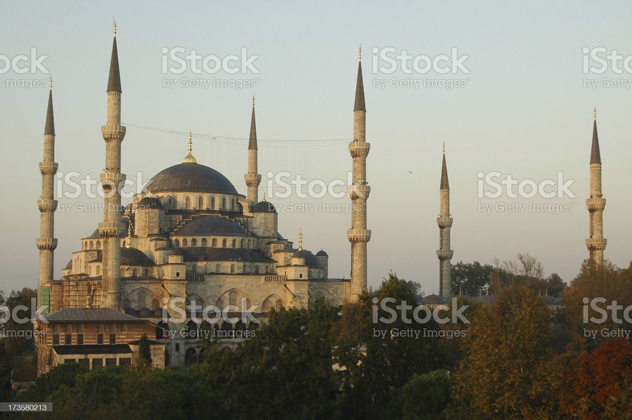Beautiful Blue Mosque royalty-free stock photo