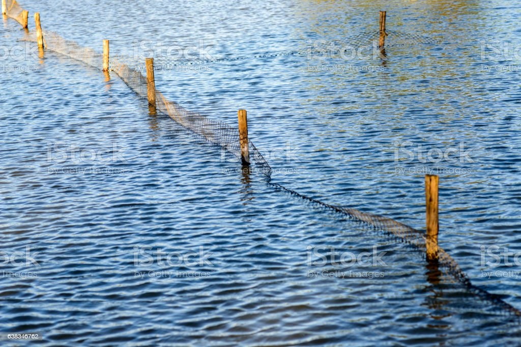Beautiful Blue Rippling Waters with Wooden Fence Post stock photo