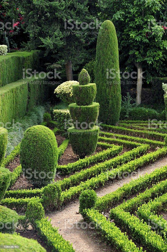 A beautiful botanical garden in Funchal, Madeira stock photo
