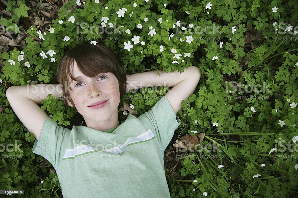 Beautiful Boy Resting in Wildflowers- Anemone stock photo
